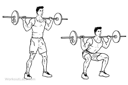 Temel 3 Bacak Gelişimi Sağlayan Hareket squat gymturk