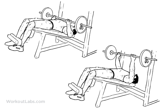 En etkili alt göğüs hareketleri Decline Barbell Bench Press gym turk gymturk