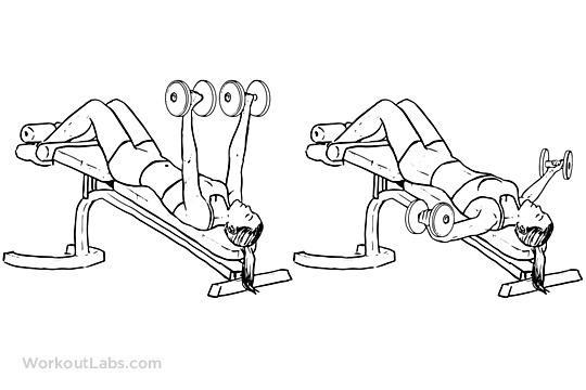 En etkili alt göğüs hareketleri Decline Dumbbell Fly gymturk gym turk