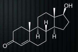 Testosteron Nedir ?