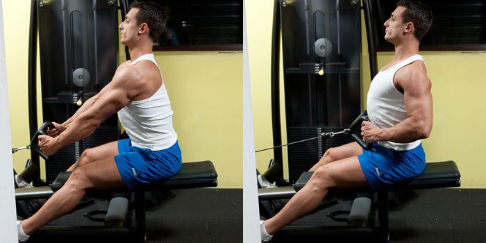 Seated-Cable-Row Dik Bir Duruş İçin Etkili Sırt Antrenmanı gymturk