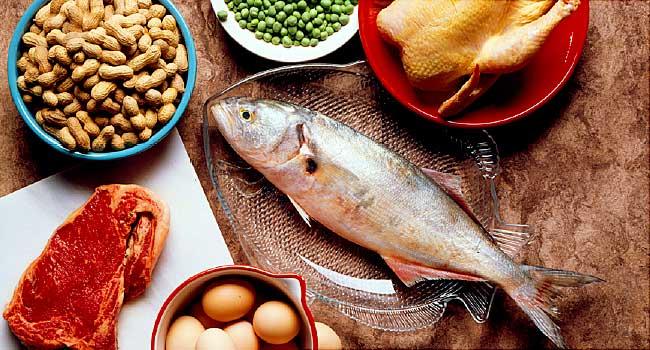 Protein Değeri Yüksek Olan Besinler
