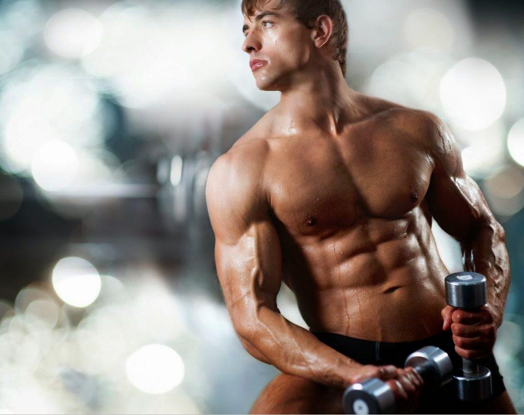 protein-shalk-nedir