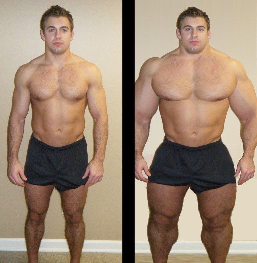 Качалка Сбросить Вес. Программа тренировок для похудения и сжигания жира